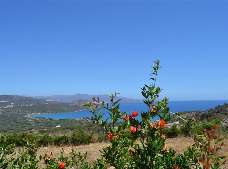 2 room house  for sale in Oropedio Lasithiou Municipality, Greece for € 500,000 - listing #137216